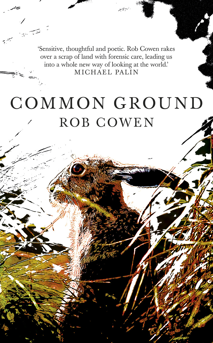 Common Ground: Rob Cowen on Edgeland Literature, Psychogeography & Nature Writing