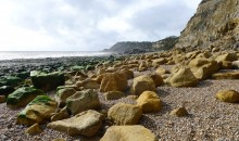 Fairlight Cove and the Epiphany of Teilhard de Chardin
