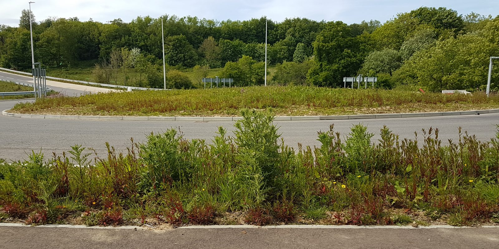 The Eerie Tale of the Zombie Junction Behind Sainsbury's Car Park